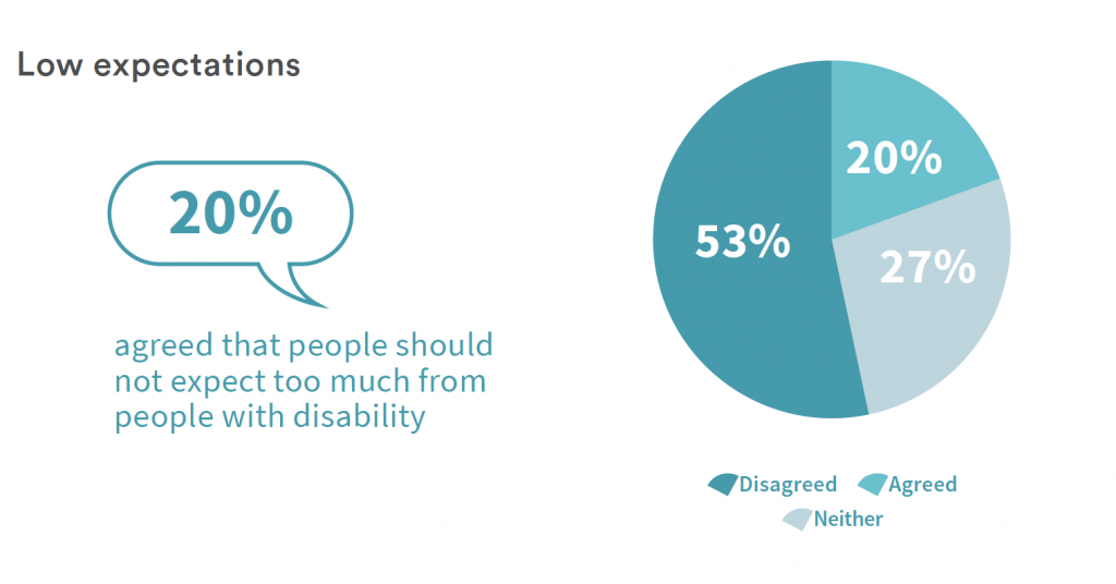 An infographic from the report shows that 20% of survey participants agreed that people should not expect too much from people with disability.